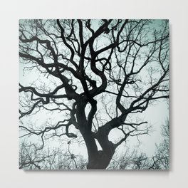 Tree Silhouette - Blue Metal Print