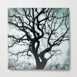 Tree Silhouette - Blue Metal Print