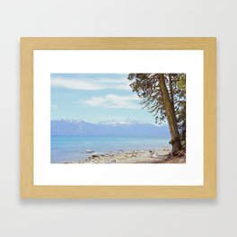 Tree by the lake Framed Art Print