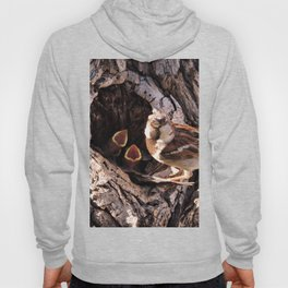 House Sparrow Keeping House Hoody