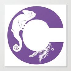C is for Chameleon - Animal Alphabet Series Canvas Print