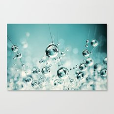 Cactus Candy Blue Canvas Print