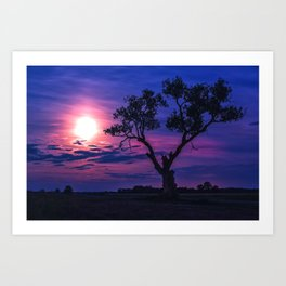 Under the Glow of a Full Moon Art Print
