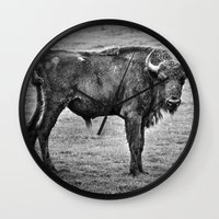 buffalo Wall Clocks featuring Buffalo by davehare