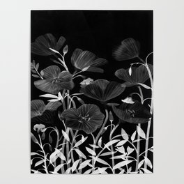 BLACK & WHITE - 290818/1 Poster
