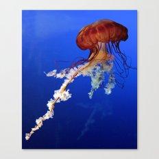 Jellyfish 2 Canvas Print