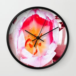 Pink Orchidaceae Wall Clock