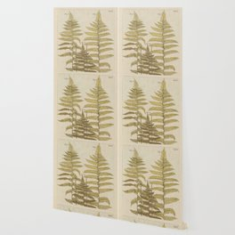 Vintage Fern Botanical Wallpaper