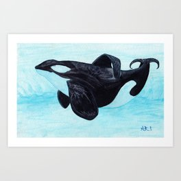 A Prayer for the Orca ~ Watercolor Painting by Amber Marine, (Copyright 2013) Art Print