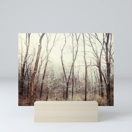 Winter Woods #1 Mini Art Print