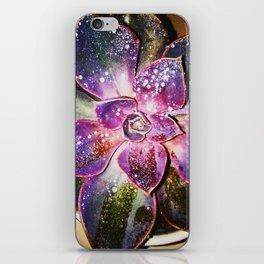 Soulful succulent iPhone Skin