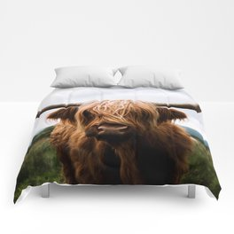 Scottish Highland Cattle in Scotland Portrait II Comforters
