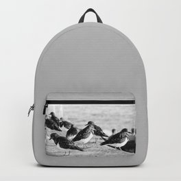 Birds and People relaxing at the beach Backpack