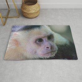 White headed capuchin monkey Rug