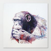 monkey Canvas Prints featuring Monkey by Cristian Blanxer
