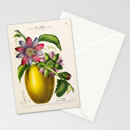 """Passionflower and passionfruit from """"Flore d'Amérique"""" by Étienne Denisse, 1840s Stationery Cards"""