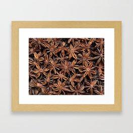 Aromatic star anise seeds Framed Art Print