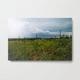 Texas Wildflowers - Retro Style Art of Flowers Along Fenceline Metal Print