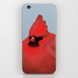 After Christmas cardinal bird iPhone Skin