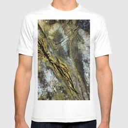Rotten Cross Section T-shirt