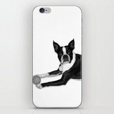Fetch Boston Terrier B/W iPhone & iPod Skin