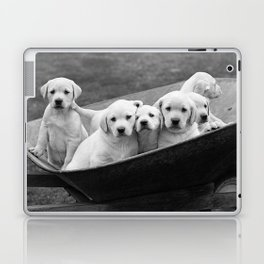 Labs Puppies In A Wheelbarrow Laptop & iPad Skin