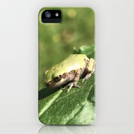 The Meaning of Tiny iPhone Case