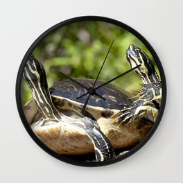 Watercolor Turtle, Eastern Painted Turtle 17, Merchants Millpond, North Carolina, Bumps on a Log Wall Clock