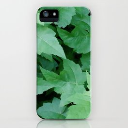 Settled iPhone Case