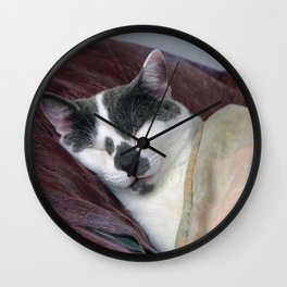 Cat Napping Wall Clock