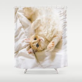 Harry on the bed Shower Curtain