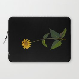 Rudbeckia Trifoliata Mary Delany British Botanical Paper Flower Collage Delicate Flowers Laptop Sleeve