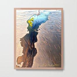 reflecting pool Metal Print