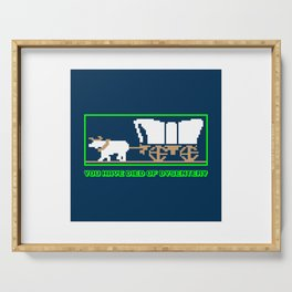 You Have Died of Dysentery - Funny Gaming Quote Gift Serving Tray