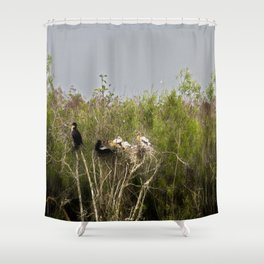 Anhinga Family Tree Shower Curtain