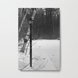 Welcome to Narnia Metal Print