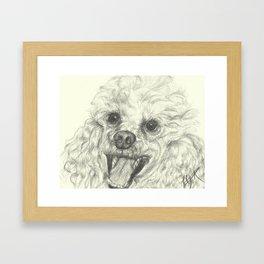Dog-Einstein Framed Art Print