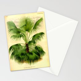 Vintage Botanical illustration, 1875 (Palm) Stationery Cards