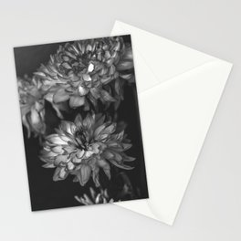 Monochrome Floral Stationery Cards