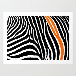 Orange Zebra Art Print