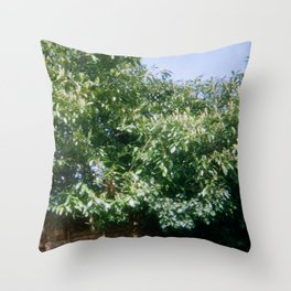 Leaves of Finchley Throw Pillow