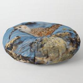 Bird on the Beach / A Solitary Dunlin Floor Pillow
