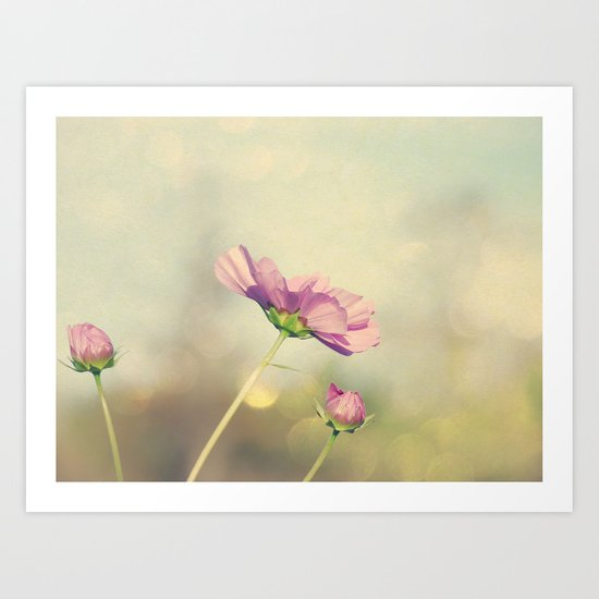 Cosmos in the Pink II Art Print
