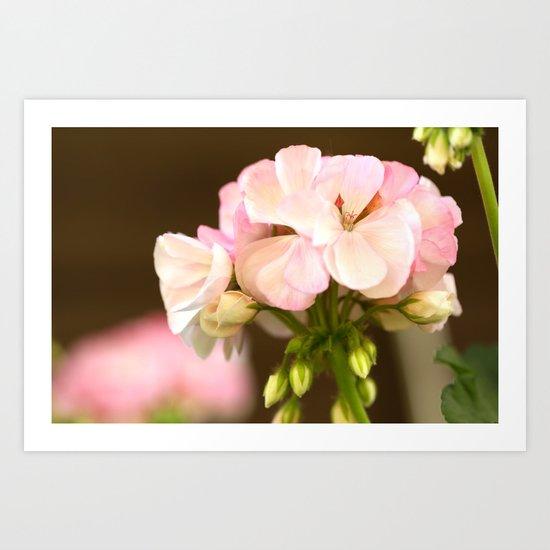 Soft Pink Petals Art Print