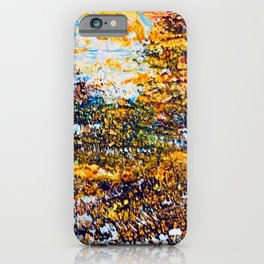 autumn splendour iPhone Case