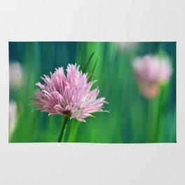 Allium pink 076 Rug