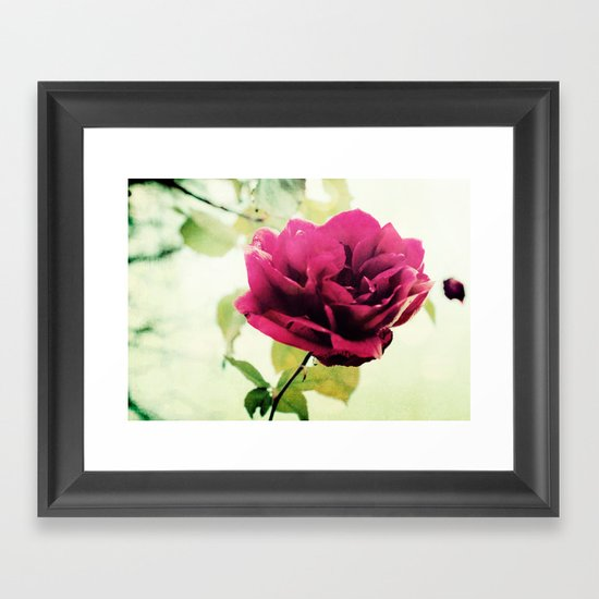 January Rose Framed Art Print