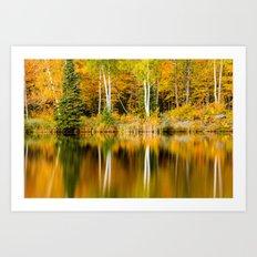 Autumn Reflections - Birch trees on Lake Plumbago Art Print