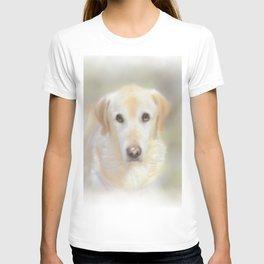 Lexie T-shirt