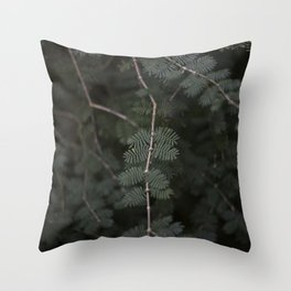 Plant - Fern 3 Throw Pillow